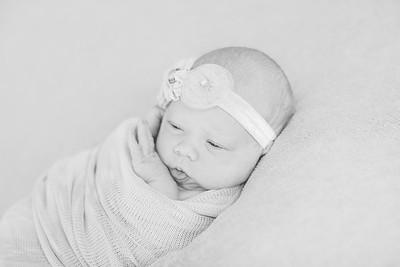 00020--©ADH Photography2017--OlympiaWarren--Newborn