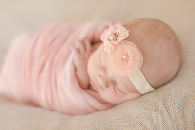 00023--©ADH Photography2017--OlympiaWarren--Newborn
