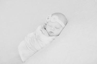 00016--©ADH Photography2017--OlympiaWarren--Newborn