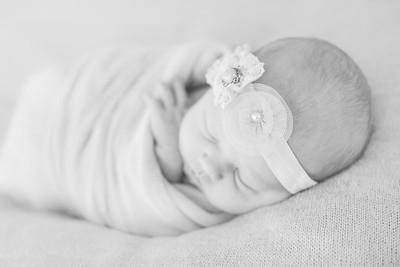 00024--©ADH Photography2017--OlympiaWarren--Newborn