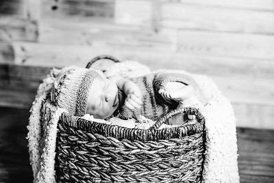 00006--©ADHPhotography2017--Poore--Newborn