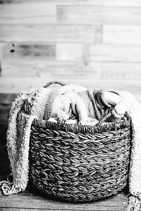 00022--©ADHPhotography2017--Poore--Newborn
