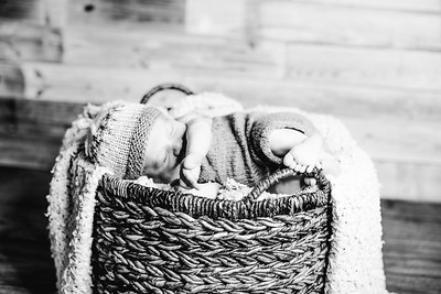 00010--©ADHPhotography2017--Poore--Newborn