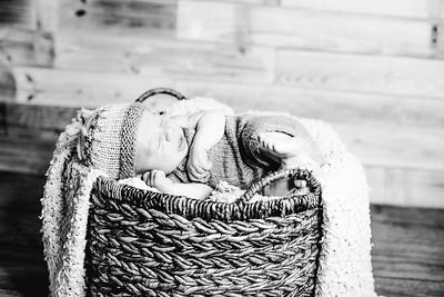 00002--©ADHPhotography2017--Poore--Newborn
