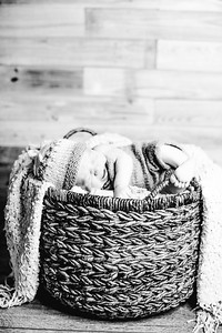 00020--©ADHPhotography2017--Poore--Newborn