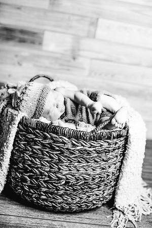 00014--©ADHPhotography2017--Poore--Newborn