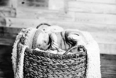 00008--©ADHPhotography2017--Poore--Newborn