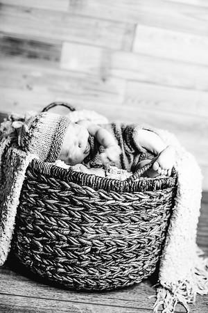 00016--©ADHPhotography2017--Poore--Newborn