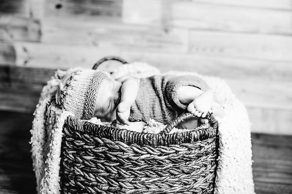 00012--©ADHPhotography2017--Poore--Newborn