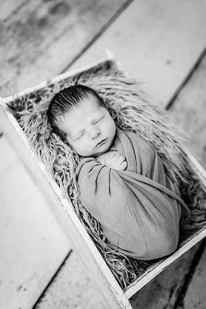 00018-©ADHPhotography2019--Rossenbach--Family&Newborn--Junne27