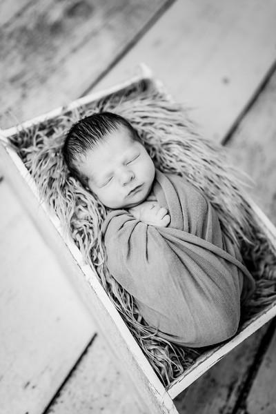 00016-©ADHPhotography2019--Rossenbach--Family&Newborn--Junne27