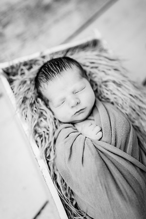 00024-©ADHPhotography2019--Rossenbach--Family&Newborn--Junne27