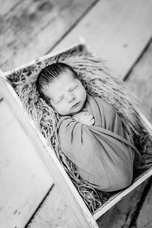 00020-©ADHPhotography2019--Rossenbach--Family&Newborn--Junne27