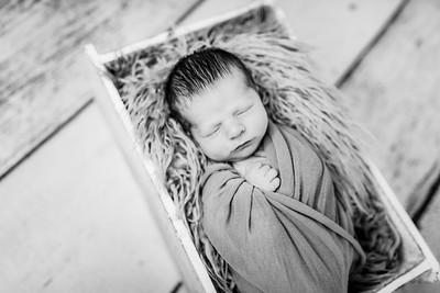 00008-©ADHPhotography2019--Rossenbach--Family&Newborn--Junne27