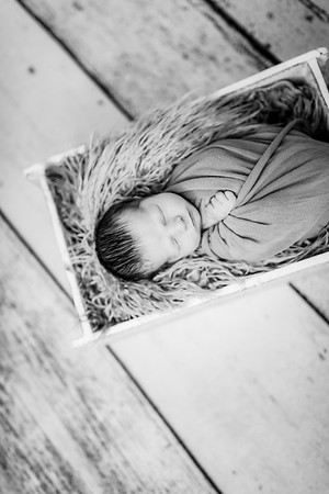 00012-©ADHPhotography2019--Rossenbach--Family&Newborn--Junne27