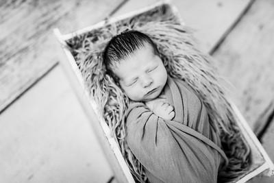 00006-©ADHPhotography2019--Rossenbach--Family&Newborn--Junne27