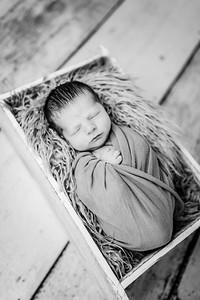 00014-©ADHPhotography2019--Rossenbach--Family&Newborn--Junne27