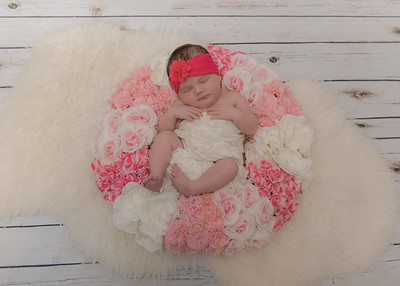 Sadie Newborn