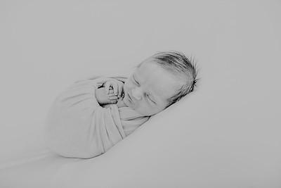 00014--©ADH Photography2017--SAYER--Newborn