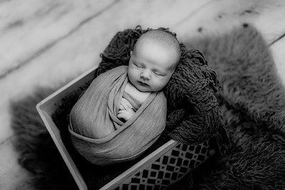 00003--©ADHPhotography2020--GriffinSheets--NewbornAndFamily--January7bw