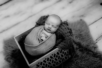 00007--©ADHPhotography2020--GriffinSheets--NewbornAndFamily--January7bw