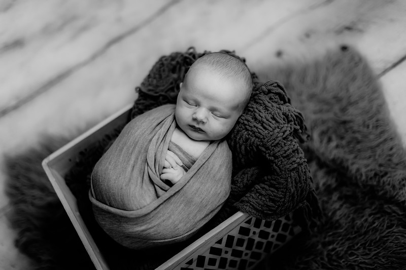 00001--©ADHPhotography2020--GriffinSheets--NewbornAndFamily--January7bw