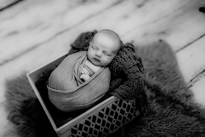 00008--©ADHPhotography2020--GriffinSheets--NewbornAndFamily--January7bw