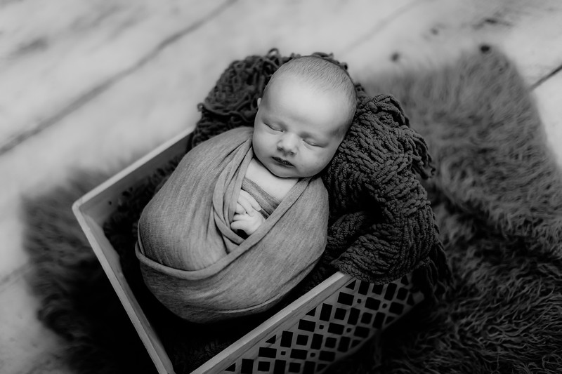 00004--©ADHPhotography2020--GriffinSheets--NewbornAndFamily--January7bw