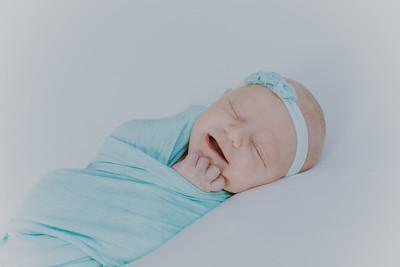 00019--2017©ADHPhotography--StellaMcConnell--Newborn