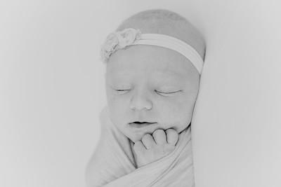 00008--2017©ADHPhotography--StellaMcConnell--Newborn