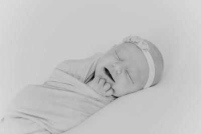 00020--2017©ADHPhotography--StellaMcConnell--Newborn