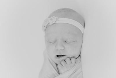 00012--2017©ADHPhotography--StellaMcConnell--Newborn