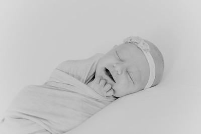 00018--2017©ADHPhotography--StellaMcConnell--Newborn