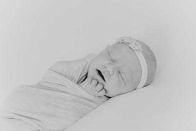 00022--2017©ADHPhotography--StellaMcConnell--Newborn
