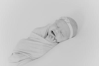 00004--2017©ADHPhotography--StellaMcConnell--Newborn