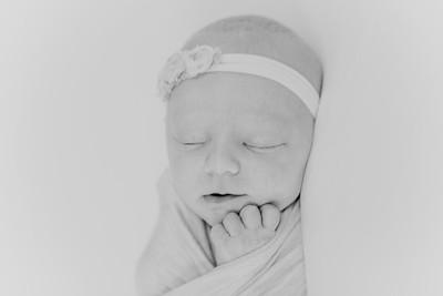 00010--2017©ADHPhotography--StellaMcConnell--Newborn