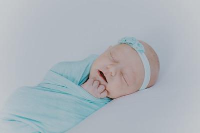 00021--2017©ADHPhotography--StellaMcConnell--Newborn