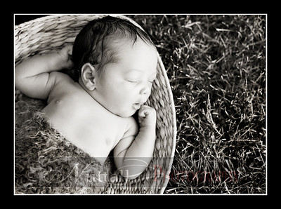 Suri Newborn 09