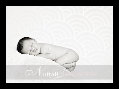 Suri Newborn 13