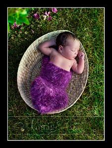Suri Newborn 11