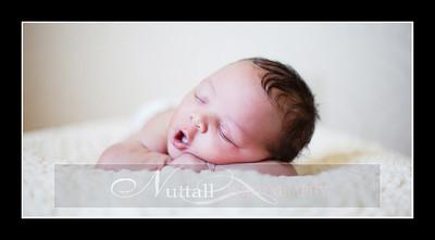 Suri Newborn 30