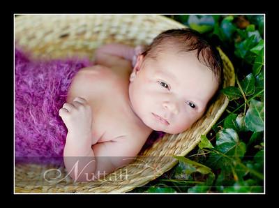 Suri Newborn 01