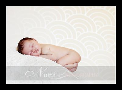 Suri Newborn 12