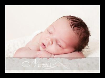 Suri Newborn 24