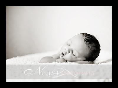 Suri Newborn 28