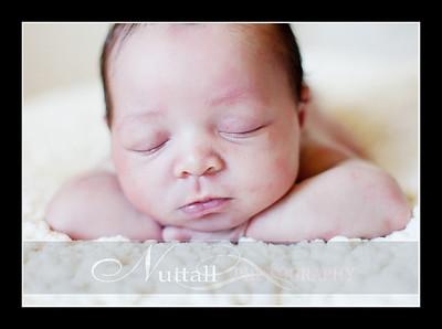 Suri Newborn 33
