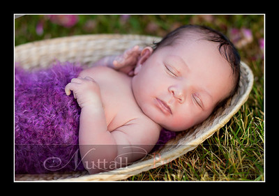 Suri Newborn 07