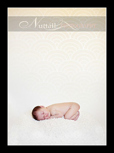 Suri Newborn 15