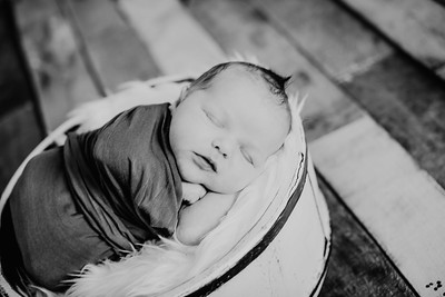00022--©ADHPhotography2018--TheodoreDonaldTenBensel--Newborn--2018March30