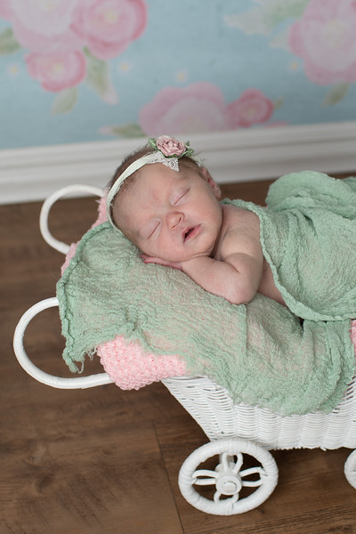 Victoria Glentzer Newborn